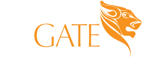 Money Gate Corporation